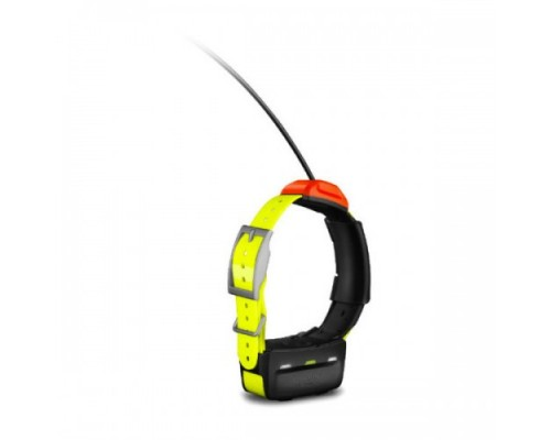 GPS-ошейник для собаки Garmin T5